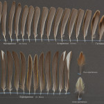 tattingar-gulsparv-1